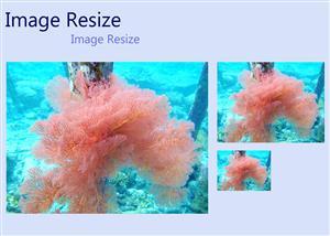 Jasa Resize Image thumbnail