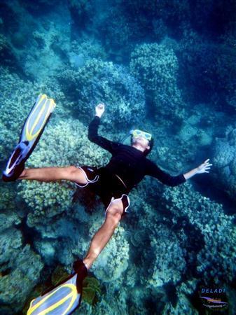 Pulau Bintan Juli thumbnail