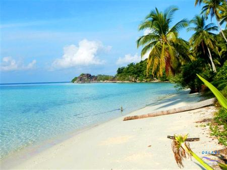 Pulau Bintan Januari thumbnail