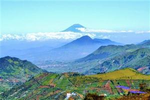 Gunung Prau 15-17 Agustus 2014 thumbnail