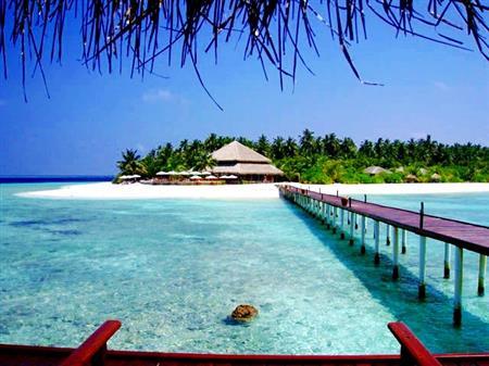 Maldive thumbnail