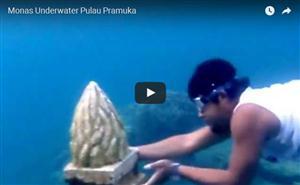 Monas Underwatter Pulau Pramuka thumbnail
