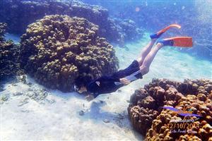 Pulau Pahawang Februari thumbnail