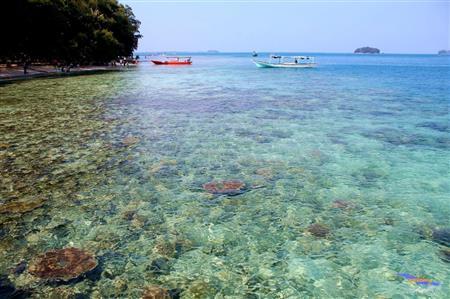 Pulau Bira Januari thumbnail