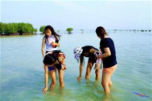 Pulau Pari Album, 16-17 Mei 2015 thumbnail