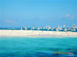 Pulau Bawean thumbnail