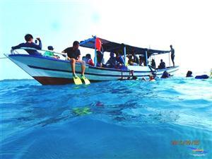 Pulau Harapan Agustus thumbnail