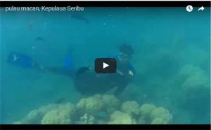 Pulau Macan, Pulau Seribu thumbnail