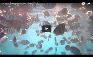 Pulau Macan thumbnail