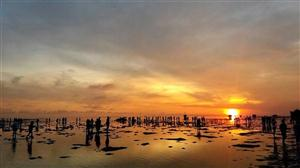 Pulau Pari Juni thumbnail