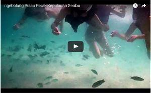Pulau Perak Kepulauan Seribu thumbnail