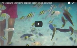 Snorkling at Pulau Perak thumbnail