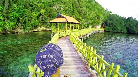 Togean Island 24-28 Maret 2017 thumbnail